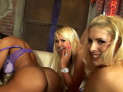 Naughty young lesbian girlfriends Amelie, Brandy Smile and Lisa Ann are licking each others cunts and assholes in rather naughty poses and squirting.