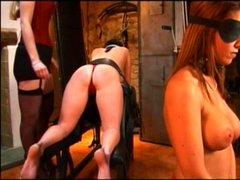Two chicks bound and asses whipped