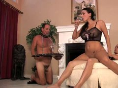 Chastity cuckold watches lady get laid