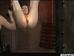 Suspended Shocked Spanked And Waxed